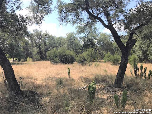 10222 Oak Forest Way, New Braunfels, TX 78132 (MLS #1410397) :: BHGRE HomeCity
