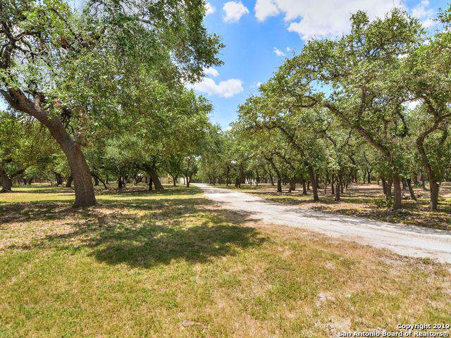 33401 Blanco Rd, Bulverde, TX 78163 (MLS #1410837) :: The Mullen Group | RE/MAX Access