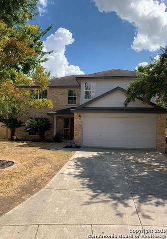 5106 Stormy Hills, San Antonio, TX 78247 (MLS #1411109) :: BHGRE HomeCity