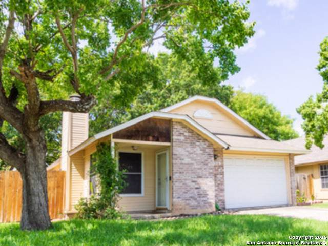 12119 Ridge Ct, San Antonio, TX 78247 (MLS #1413239) :: BHGRE HomeCity