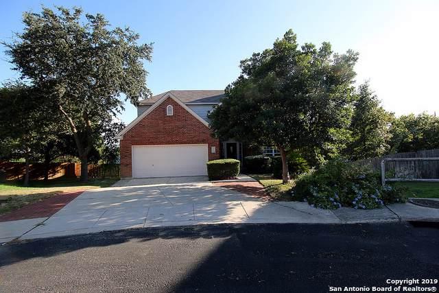 24502 Arrow Canyon, San Antonio, TX 78258 (#1416188) :: The Perry Henderson Group at Berkshire Hathaway Texas Realty