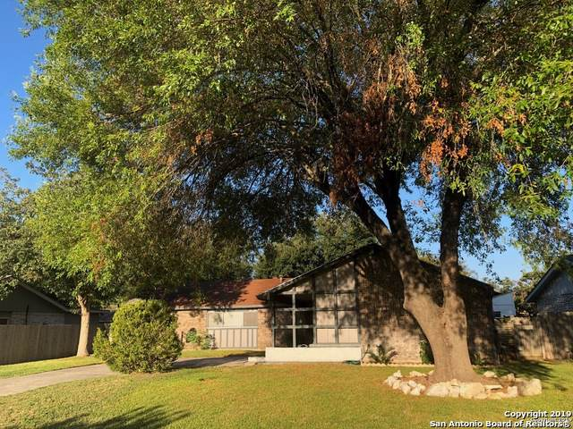 12515 La Bodega St, San Antonio, TX 78233 (MLS #1416200) :: Alexis Weigand Real Estate Group