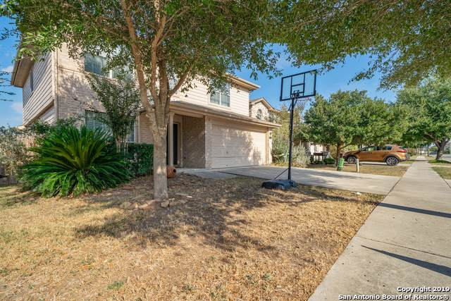 126 Roadrunner Ave, New Braunfels, TX 78130 (MLS #1416504) :: The Gradiz Group