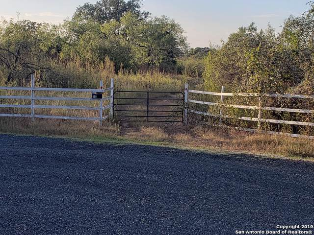 164 County Road, Floresville, TX 78114 (MLS #1417781) :: The Castillo Group
