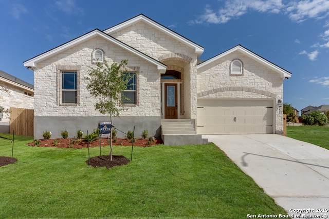 4810 Blue Jasmine, San Antonio, TX 78247 (MLS #1418014) :: Alexis Weigand Real Estate Group