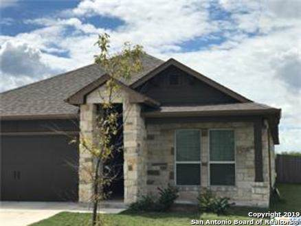 2318 Blake Way, New Braunfels, TX 78130 (#1419483) :: The Perry Henderson Group at Berkshire Hathaway Texas Realty