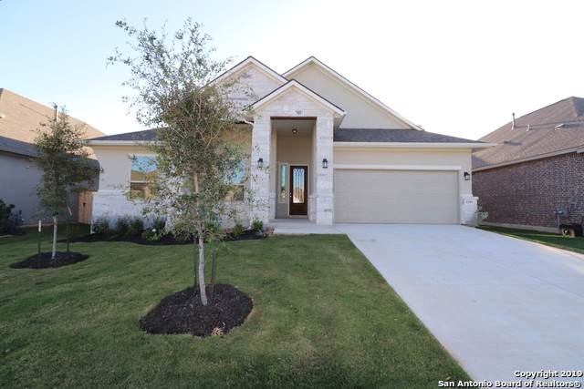 1399 Village Inn, New Braunfels, TX 78130 (MLS #1420164) :: The Gradiz Group