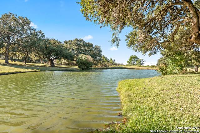 29315 No Le Hace Dr, Fair Oaks Ranch, TX 78015 (#1421003) :: The Perry Henderson Group at Berkshire Hathaway Texas Realty