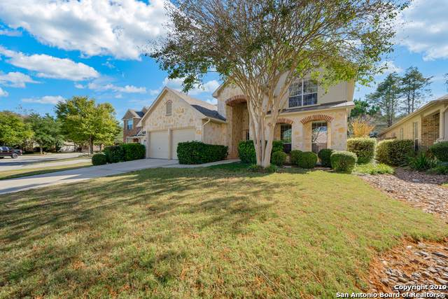 203 Aster Trail, San Antonio, TX 78256 (MLS #1423990) :: Carolina Garcia Real Estate Group