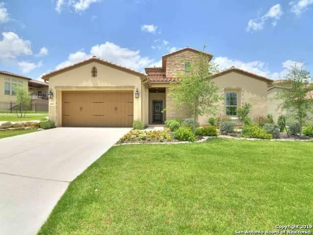 22907 Estacado, San Antonio, TX 78261 (MLS #1424789) :: Exquisite Properties, LLC