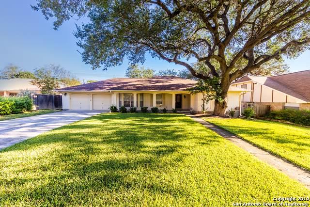 13119 Hill Forest St, San Antonio, TX 78230 (MLS #1424864) :: Vivid Realty
