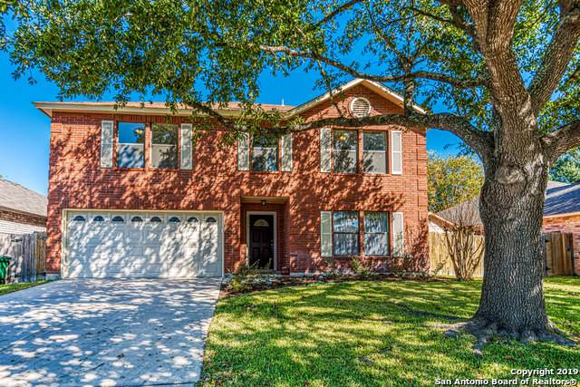 3559 Mistic Grove, San Antonio, TX 78247 (MLS #1425700) :: Alexis Weigand Real Estate Group