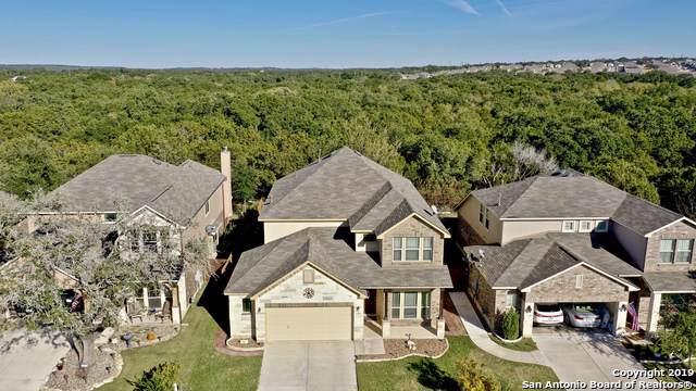 22810 Malabar Peak, San Antonio, TX 78261 (#1426072) :: The Perry Henderson Group at Berkshire Hathaway Texas Realty