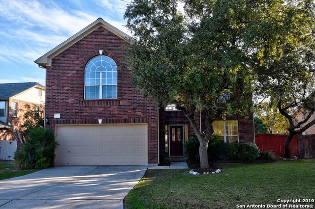 418 Mesa Hill, San Antonio, TX 78258 (#1426488) :: The Perry Henderson Group at Berkshire Hathaway Texas Realty
