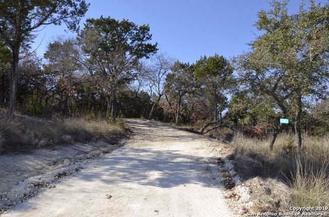 46 Walnut Grove Rd, Boerne, TX 78006 (MLS #1426840) :: Alexis Weigand Real Estate Group