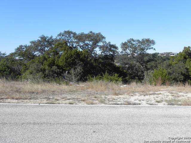 19511 Terra Elm, San Antonio, TX 78255 (MLS #1428335) :: The Glover Homes & Land Group