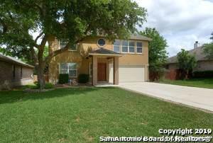 22202 Pelican Edge, San Antonio, TX 78258 (MLS #1428734) :: Alexis Weigand Real Estate Group