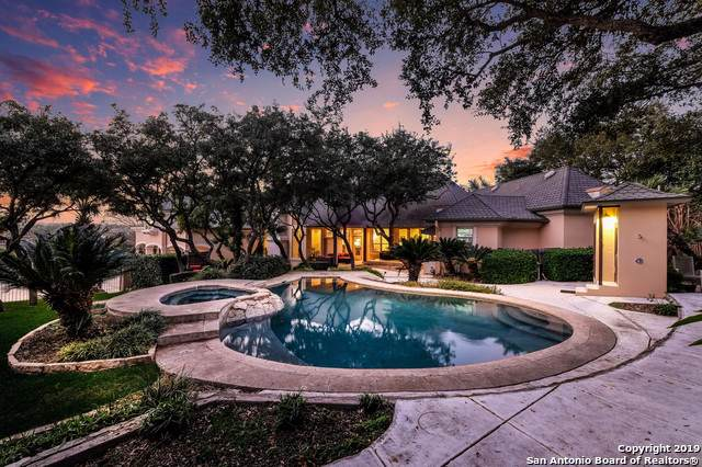 17 Caleb Circle, San Antonio, TX 78258 (MLS #1428978) :: Neal & Neal Team