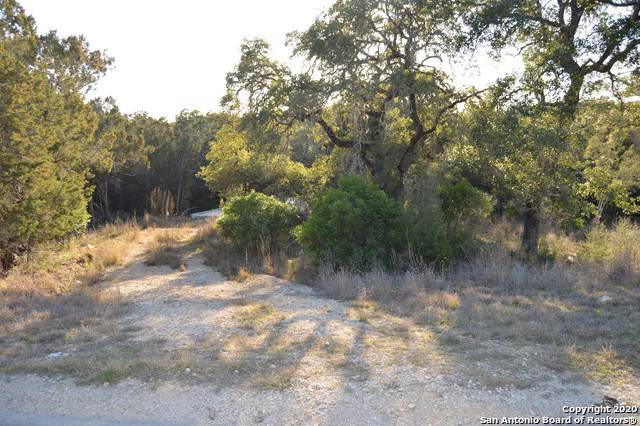 356 Ridge Country, New Braunfels, TX 78132 (MLS #1430486) :: Neal & Neal Team