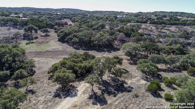 2163 Owl Branch, Canyon Lake, TX 78133 (MLS #1430526) :: BHGRE HomeCity