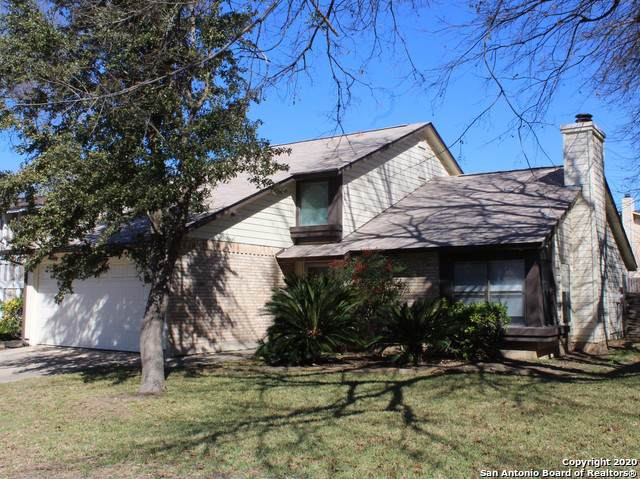 3339 Coral Grove Dr, San Antonio, TX 78247 (MLS #1432845) :: Alexis Weigand Real Estate Group