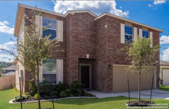 27547 Lasso Bnd, Bexar Co, TX 78260 (#1433348) :: The Perry Henderson Group at Berkshire Hathaway Texas Realty