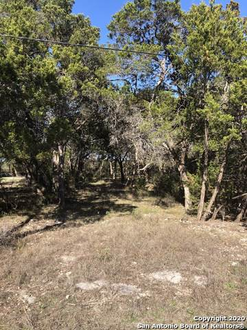 325 Eagle Rock Rd, Spring Branch, TX 78070 (MLS #1434231) :: The Mullen Group | RE/MAX Access