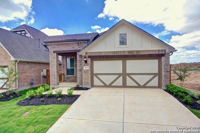 2079 Cowan Dr, New Braunfels, TX 78132 (#1437211) :: The Perry Henderson Group at Berkshire Hathaway Texas Realty