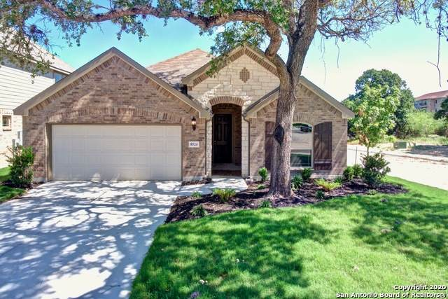 8524 Tulocay Blanca, Boerne, TX 78015 (MLS #1437223) :: The Castillo Group