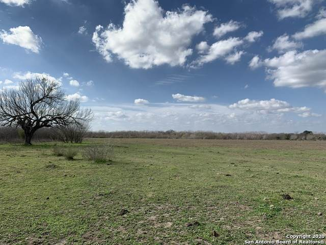 14215 Quintana Rd, Atascosa, TX 78002 (MLS #1438495) :: Legend Realty Group
