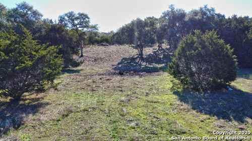 413 Long Meadow, Spring Branch, TX 78070 (MLS #1441894) :: Tom White Group