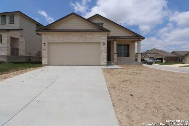 2003 Rhesus View, San Antonio, TX 78245 (#1442962) :: The Perry Henderson Group at Berkshire Hathaway Texas Realty