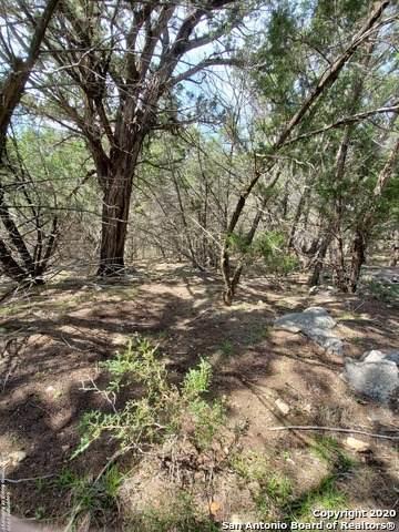 703 Mountain Creek Trail, Boerne, TX 78006 (MLS #1444675) :: NewHomePrograms.com LLC