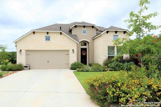 23011 Diamante, San Antonio, TX 78261 (MLS #1444694) :: Vivid Realty