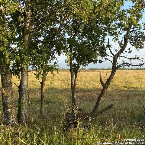 TBD Fm 1347-Tract 2, Stockdale, TX 78160 (MLS #1452211) :: Alexis Weigand Real Estate Group