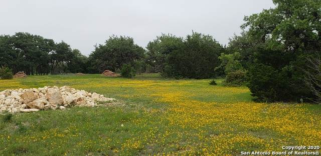 LOT 90 Blevins Pass, Pipe Creek, TX 78063 (MLS #1452498) :: The Lugo Group