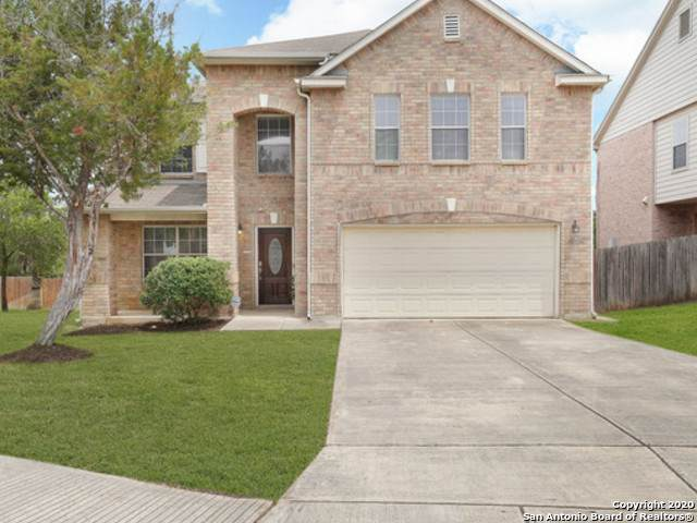 21126 Pearl Harvest, San Antonio, TX 78259 (MLS #1455484) :: The Glover Homes & Land Group