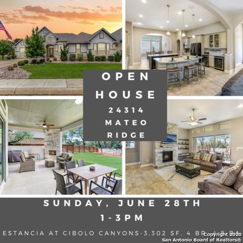 24314 Mateo Ridge, San Antonio, TX 78261 (MLS #1457540) :: 2Halls Property Team | Berkshire Hathaway HomeServices PenFed Realty