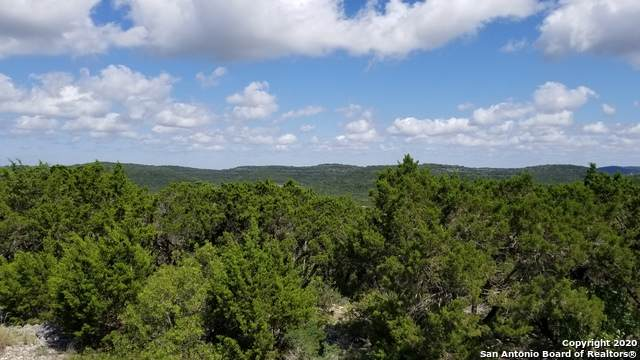 LOT 35 Pr 1718, Mico, TX 78506 (MLS #1458562) :: The Glover Homes & Land Group