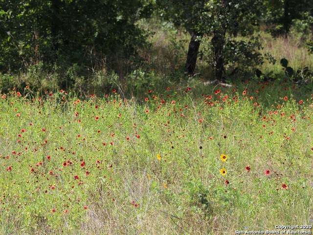 LOT 14 Clear Lake Dr, Poteet, TX 78065 (MLS #1459006) :: The Castillo Group