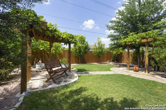 11103 Unbridled, San Antonio, TX 78245 (MLS #1459270) :: The Glover Homes & Land Group