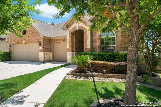 25710 Coreopsis, San Antonio, TX 78261 (MLS #1459538) :: The Glover Homes & Land Group