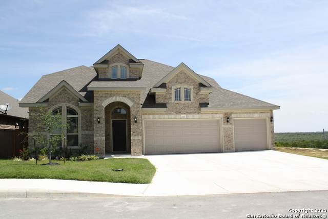 1640 Oak Willow Dr, San Antonio, TX 78245 (MLS #1460548) :: The Heyl Group at Keller Williams