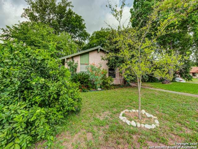 4214 Chestnuthill Dr, San Antonio, TX 78218 (MLS #1460977) :: The Heyl Group at Keller Williams