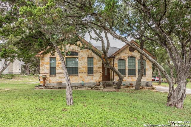 1790 Point View, Spring Branch, TX 78070 (MLS #1461473) :: Concierge Realty of SA