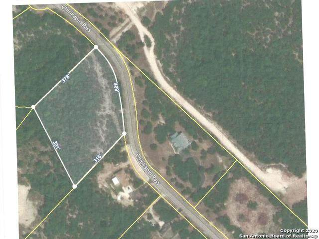 117 Chinkapin Pass, Boerne, TX 78006 (MLS #1462486) :: The Glover Homes & Land Group