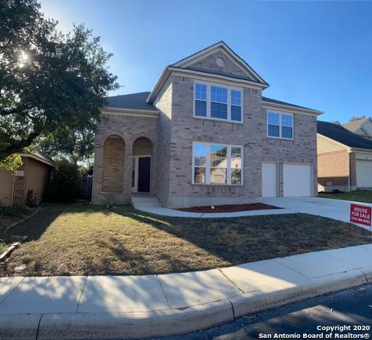 2710 Lilac Ct, San Antonio, TX 78261 (MLS #1463549) :: REsource Realty