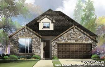 29731 Elkhorn Ridge, Fair Oaks Ranch, TX 78015 (MLS #1465211) :: Alexis Weigand Real Estate Group