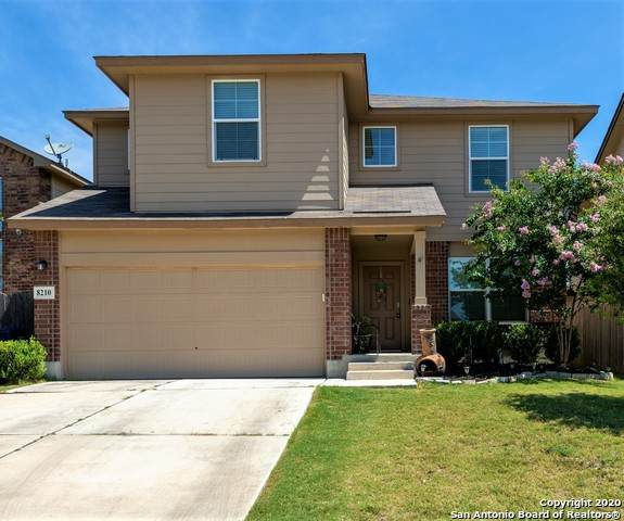8210 Radiant Star, San Antonio, TX 78252 (MLS #1465903) :: Alexis Weigand Real Estate Group