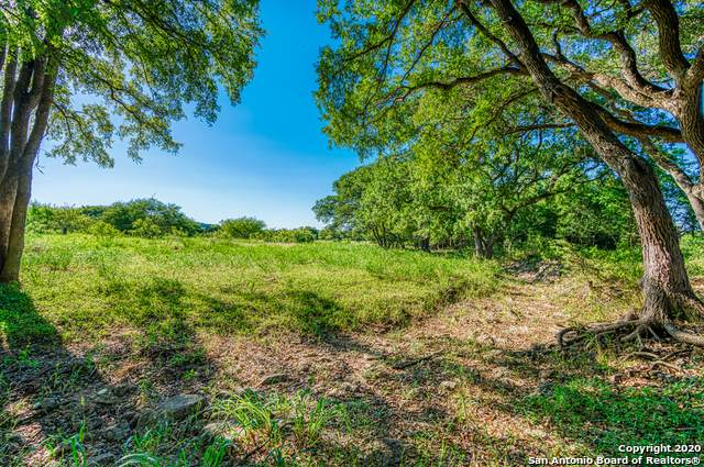 24709 Breeze Oak, San Antonio, TX 78255 (MLS #1465959) :: Santos and Sandberg